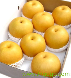 Chinese New Crop Fresh Good Quality Pear pictures & photos
