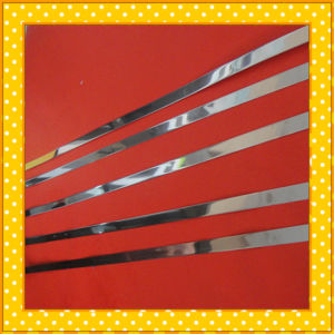 410 420 430 Stainless Steel Narrow Strip pictures & photos