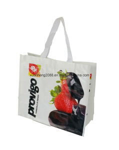Cheap Pricing PP Laminated Non Woven Bag pictures & photos