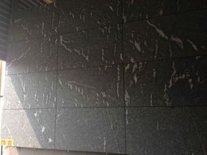Black Flamed Granite Tile for Buiding