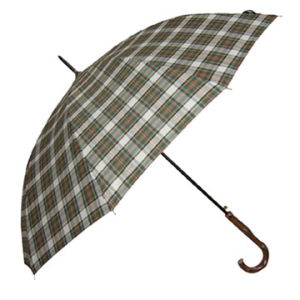 Automatic Men Umbrella (BR-ST-80) pictures & photos
