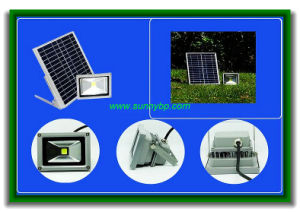 Solar Spot Light with Motion Sensor pictures & photos