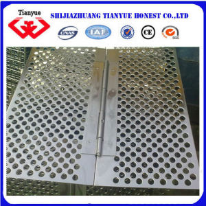 Galvanized Punched Metal Sheet (TYB-0039) pictures & photos