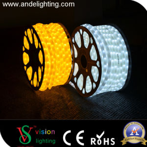 13mm 2wire Waterproof LED Flexible Soft Rope Light pictures & photos