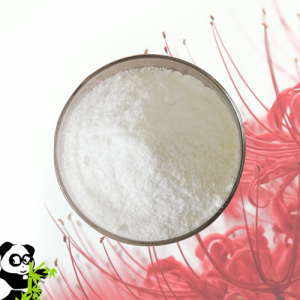 High Purity Raw Material Powder Hormone Steroid Powder Proviron pictures & photos