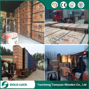 4′x8′ Brown/Black Film Faced Plywood for Construction pictures & photos