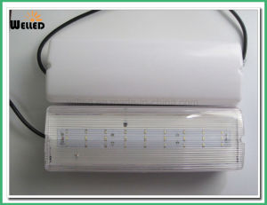 Maintained LED Emergency Bulkhead Light 8W/8W pictures & photos