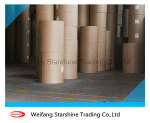 Food Grade Single Side PE Coated Paper in Roll pictures & photos