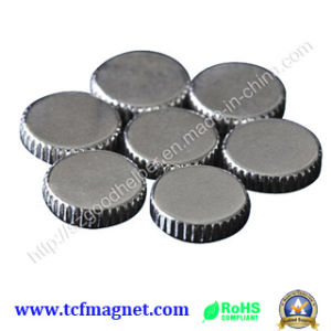 Rare Earth Neodymium Magnet for Industry with SGS