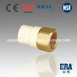 ASTM D2846 Era CPVC Fitting Brass Female Adaptor pictures & photos