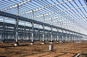 Customizable Steel Structure in China pictures & photos