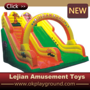 2016 CE Popular in USA Outdoor Inflatable Slide (C1224-5) pictures & photos