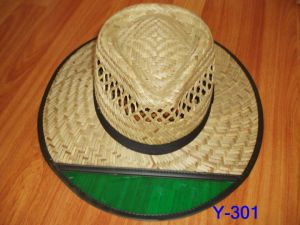 Straw Hat (Y-310) pictures & photos