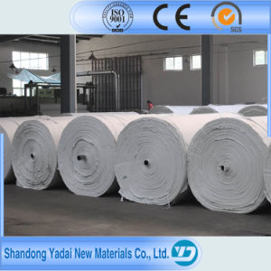 Fire Resistance Needle Punched Nonwoven Geotextile Polyester pictures & photos