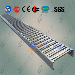Light Duty Ladder Cable Tray for Australia pictures & photos