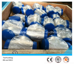 Stainless Steel Wp317 Bw Std Seamless Tee with Plastic Cap pictures & photos