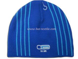 Fashion Hat Bat-H018 pictures & photos