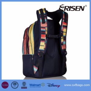 Wholesale Teenager OEM Backpack Book Student School Bag pictures & photos