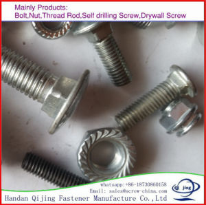 DIN6923 M12 Hexagon Nuts with Flange pictures & photos