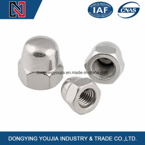 M3-M24 Stainless Steel Hexagon Acorn Nuts Made in China pictures & photos