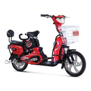 16′ Steel Frame Electric Bicycle pictures & photos