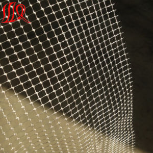 60g PP Two Way Stretched Net pictures & photos