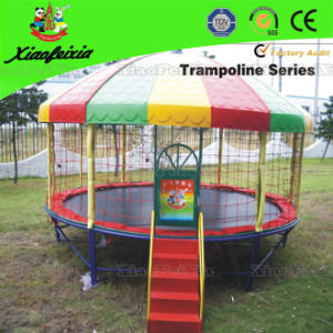Outdoor Safety Net Trampoline with Sun Roof (LG066) pictures & photos