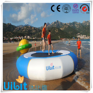 Bouncer Water Sports Playground Equipment for Beach/Water Game pictures & photos