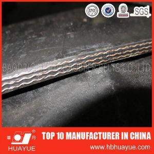 Manufacturer of Heat Resistant Rubber Conveyor Belt pictures & photos