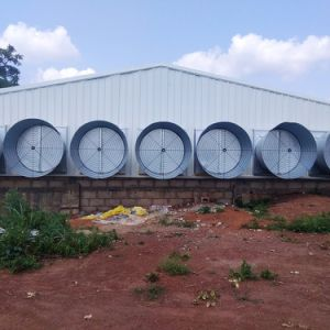 Structure Steel Farm with Morden Machines From Qingdao Hapy pictures & photos