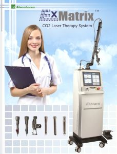 Fraccionario Cutting Machine Scanning Speed Fast CO2 Laser pictures & photos