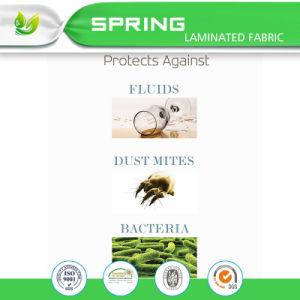 Full Mattress Protector -Waterproof Fitted Vinyl Free Mattress Cover Mattress Encasement pictures & photos