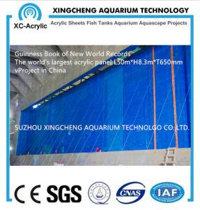 The World′s Largest Acrylic Panel 650 mm Aquarium pictures & photos