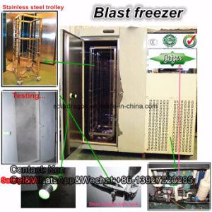 Blast Freezer / Shock Freezer / Quick Freezer pictures & photos
