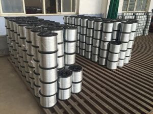 China Supplier Electric Galvanized Iron Wire pictures & photos