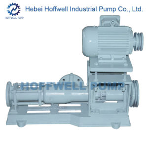 CE Approved G Marine Type Single Screw Pump pictures & photos