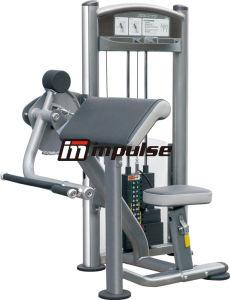 Arm Curl, Biceps Training (IT9003)