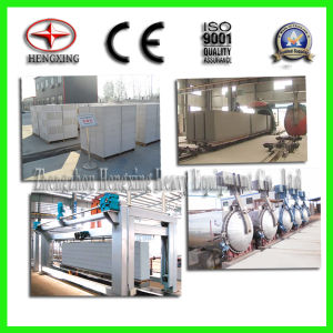 Hengxing AAC Processing Plant, AAC Plant, AAC Process Plant pictures & photos