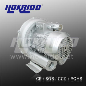 Hokaido Simens Type Ring High Pressure Blower (2HB 420 H46) pictures & photos