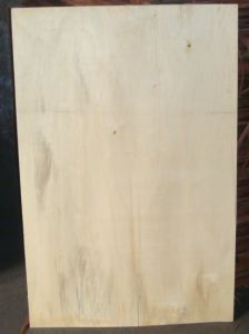 Hot Sale! Poplar Veneer