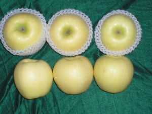 Fresh Golden Apple (3)