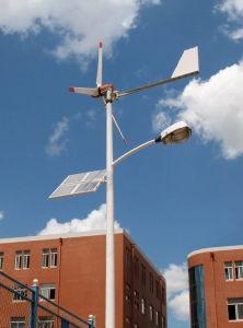 Wind-Solar Hybrid Light (30W, 50W, 70W)