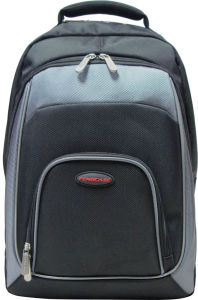 Backpack Laptop Computer Notedbook Carry Nylon Fuction Business 15.6′′ Laptop Backpack pictures & photos