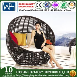 Rattan Outdoor Furniture Sun Loungers Wicker Daybed (TGLI-10) pictures & photos