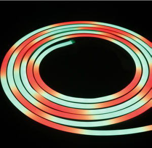 Digital 14.4W/M Full Waterproof IP68 Color Changing LED Neon Rope Light pictures & photos