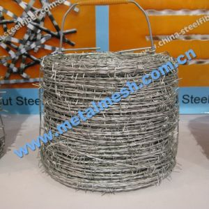 Electro Galvanized Barbed Wire for Fence pictures & photos