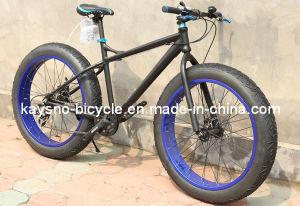 Fat Tire Bike (KSN-BC-01)