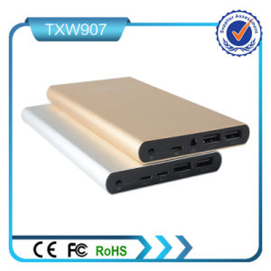 Best for Mobile 10000mAh Power Bank with Ios and Micro USB Input Ports