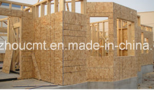 OSB (Oriented Strand Board) Production Line pictures & photos