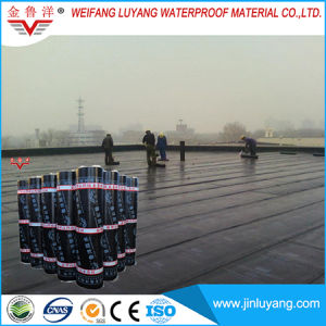 Polyester Reinforced APP Modified Bitumen Waterproof Membrane for Basement pictures & photos